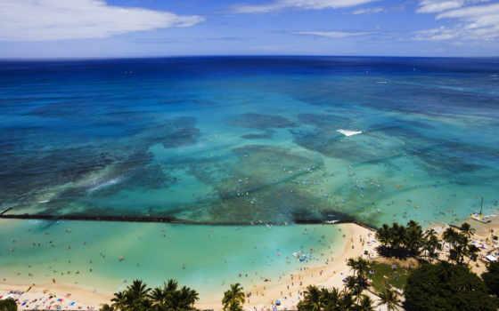 hawaii, пальмы, ocean