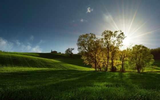 święty, duch, rays, поле, trees, sun, погода, рассвет, будет,