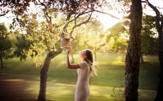 devushka, девушка, дерево