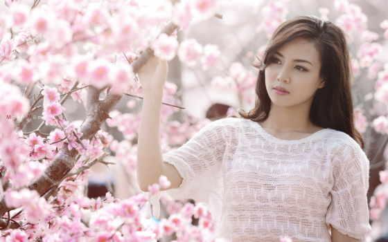 cherry, цветущая, девушка, блог, Сакура, cvety, englishdom,