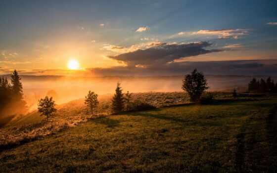 сол, nasc, sun, landscape, природа, горизонт, дерево, закат, небо, год, завтрак