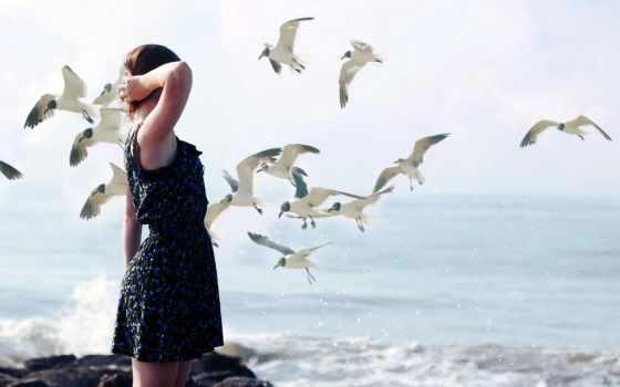 девушка, птицы, обстановка