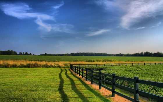 сельское, ферма, зелёный, margin, забор, мар, небо, сено,