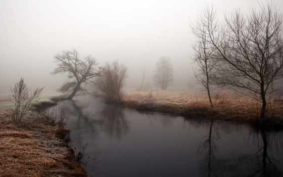 вода, речка, пора, туман, берега, деревья, хмурое, утро, природа,