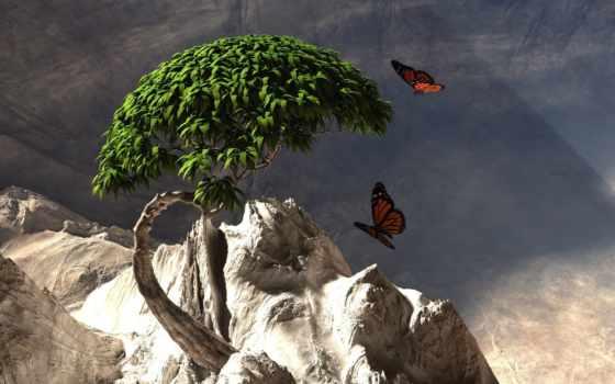 бабочки, дерево, графика