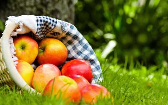 яблоки, корзина, красные