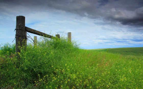 небо, трава, забор Фон № 57200 разрешение 1920x1080