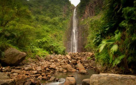 jungle, водопад, природа