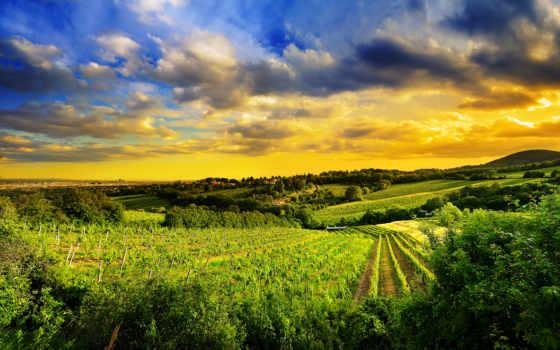 природа, пейзажи -, категории, north, west, hills, kahlenberg, vienna, австрия,