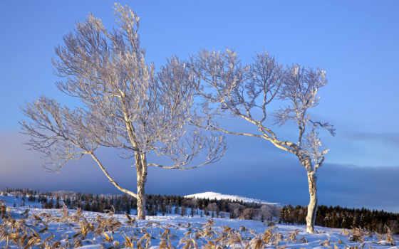 пейзажи -, winter, небо