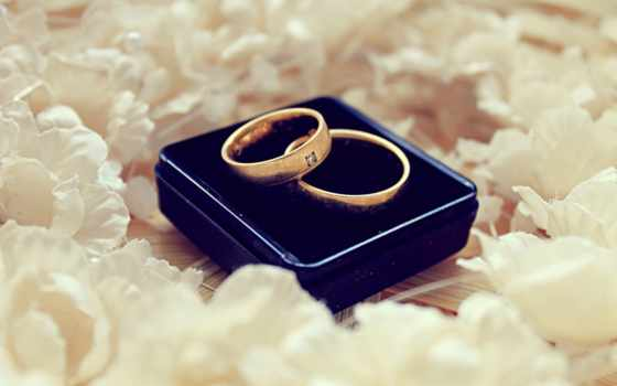 обручальниые кольца в белых лепестках