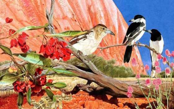 птица, desktop, love, free, birds, экран, size, you,