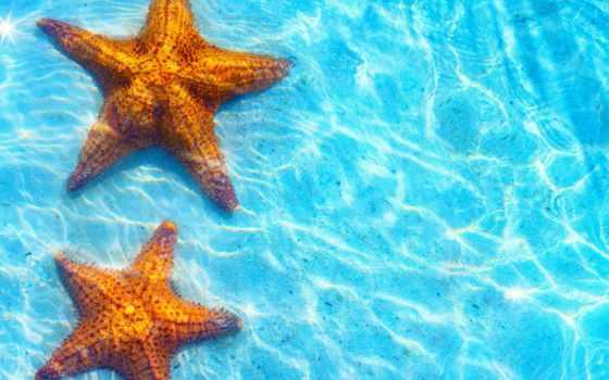 море, звезды, морские, голубая, пляж, iphone, water, морская, берег, star,
