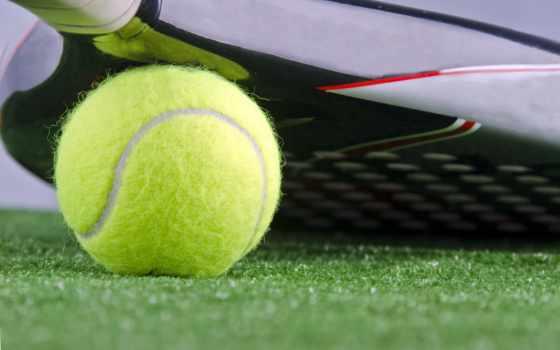 тенис, спорт