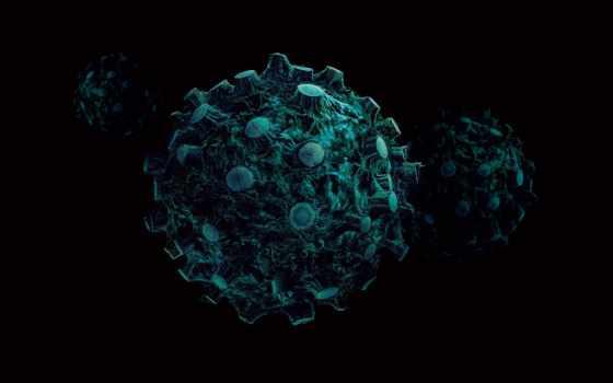 клетки, пни