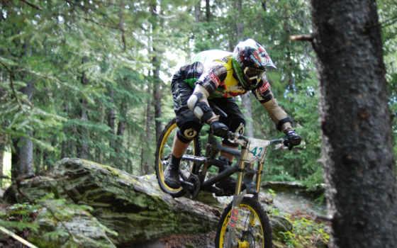 экстрим, лес, велосипед