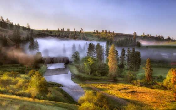 рассвет, туман, река