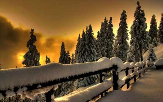 winter, холод, снег