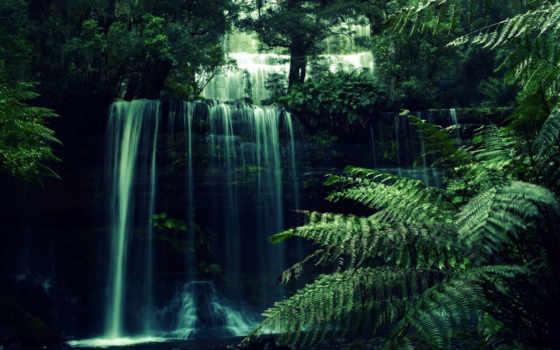 pikabox, jungle, природа, animated, desktopanimated, www, лес, водопады,