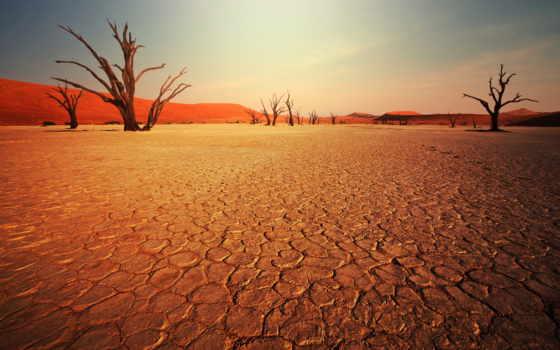 parede, stock, paisagem, deserto, sobre, пустыни, naturaleza, картинку,