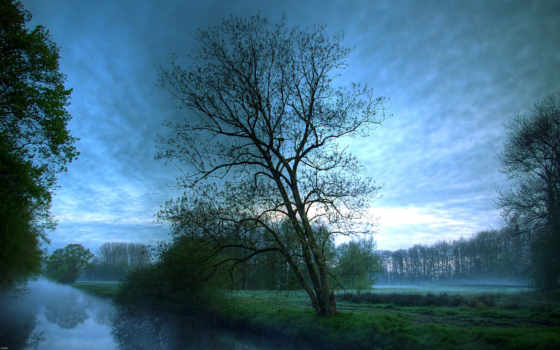 wallpapers, деревья, hd, фотополимер, wallpaper, река, forest, mist, or, dusk, утро, ты, туман, облака, stream, супер, тумане, марта, ведьмы, morning, женщины, все, download,