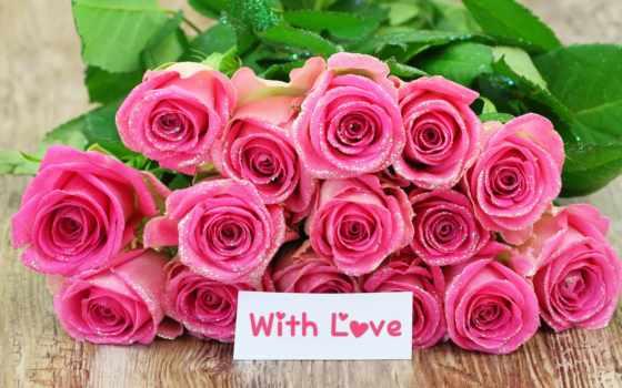рождения, розы, днем, розовые, розовый, товар, фонов, дешевые, роз, схожие,