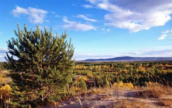 сибири, пейзажи -, you, природа, июл, фона, интересные, великолепные, томск, мб,