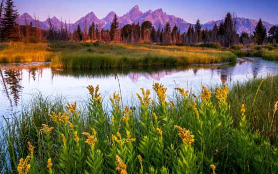 природа, река, лес, горы, трава, озера, красивые, цветы, леса,