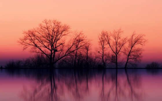 озеро, розовый, фея, безмолвие, имени, tema, бассейн, midhat, value, осень, качество