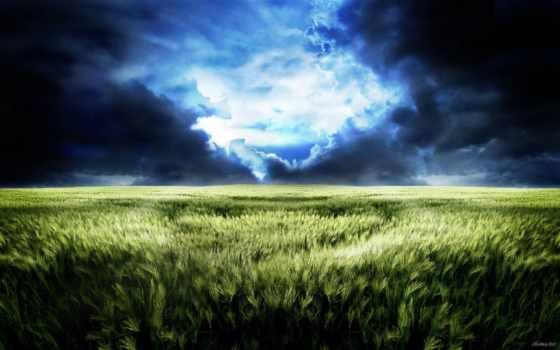 буря, поле, природа, black, облако, amber, непогода, порода, champion, jimdo