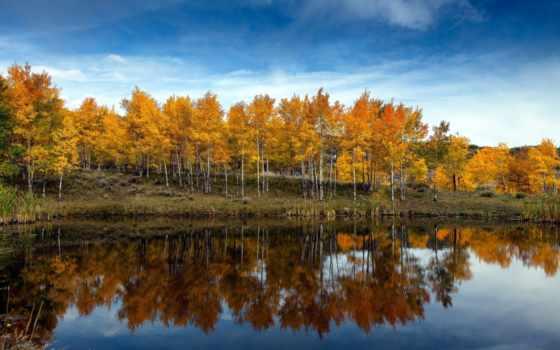 iphone, осень, куз, озеро
