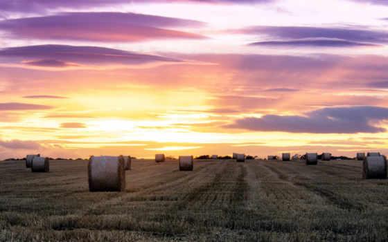 поле, сено, закат, пейзажи -, дек, volpuri, les, favourite,