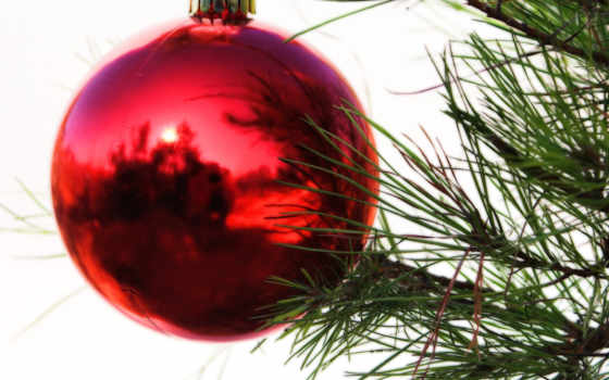 christmas, ёль, ветки, елка, праздник, ornament, ornaments, красный, desktop, resimleri, din, an, новый, ce, год, you, some, yılbaşı, bucurie, шар,