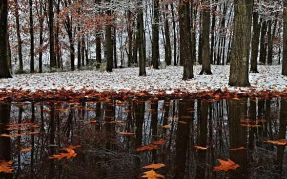 осень, поздняя, снег, winter, initial, park, нояб, природа,