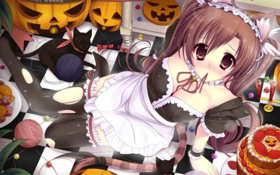 anime, ушки, девушка, горничная, кот, грудь, киска, kawaii, тыква,