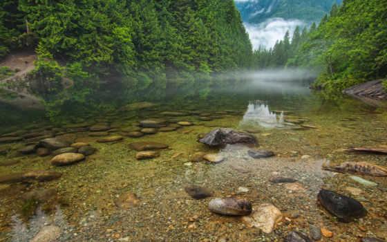рыбалка, река, природа, туман, утро, камни, water, лес, красивые, сквозь, trees,