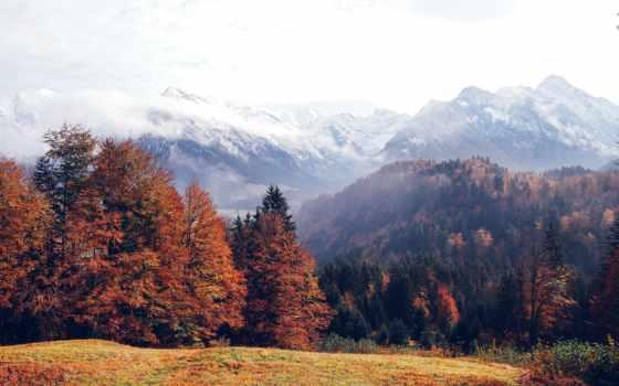 mountains, лес, осень, file, германия, можно,