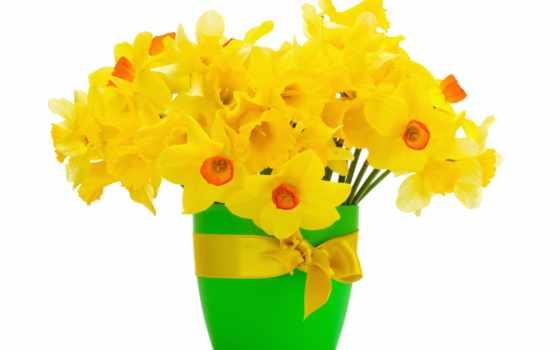 цветы, посмотреть, обою