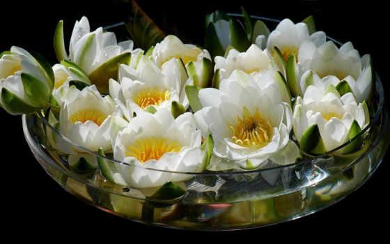 букет, ваза, цветы