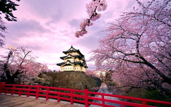 castle, лидиятур, японии, hirosaki, новости, отдых, рубежом, japanese, qigong, Сакура, travel,