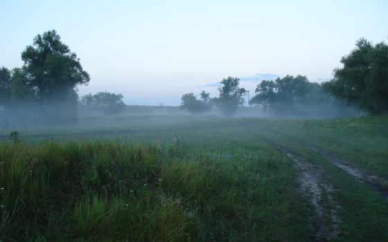 природа, туман