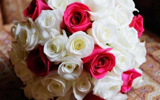 цветы, розы, букеты