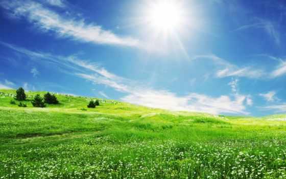 небо, весна, голубое, поле, природа, sun, трава, зелёная, oblaka,
