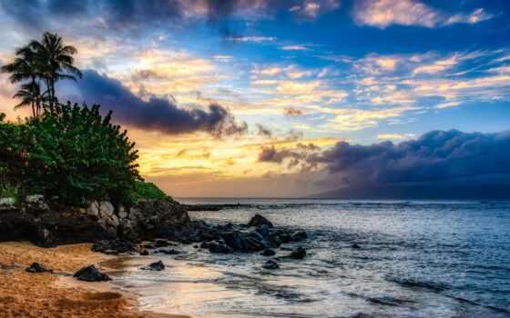 остров, море, остров, preview, palma, пляж, дерево, palm, город, силует, любов