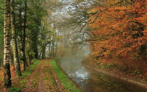 осень, река, природа