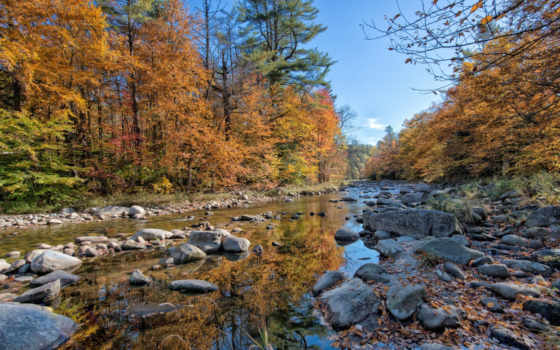река, осень, лес Фон № 99053 разрешение 1920x1200