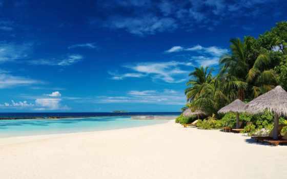 maldives, пальмы, пляж, ocean,