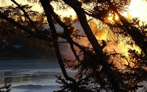 sun, природа, реки, water, лучи, свет, закат, дерево,