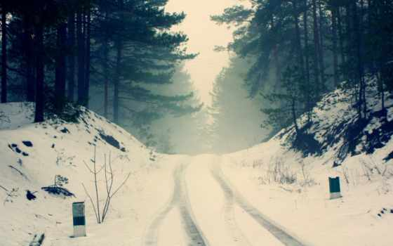 winter, лес, природа, trees, туман, снег, дорога, сосны, ветки,