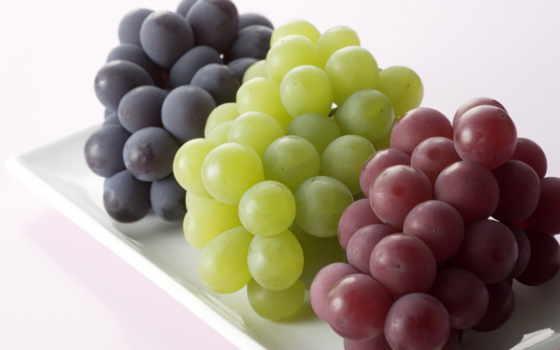 виноград, винограда, сорта, black, зелёный, сортов, розовый, ягоды, зеленого, red,
